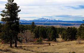 what is a ranch style house parker colorado homes for sale parker colorado real estate