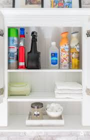 cute bathroom storage ideas bathroom cleaning products storage best bathroom decoration