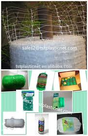 trellis for climbing plant plant supporting net rose flower