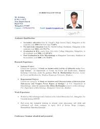 beautiful sample resume nz pictures simple resume office