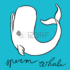 cachalot or whale sketch doodle line art royalty free