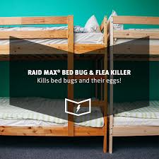 How Do You Say Bedroom In Spanish by Raid Max Bed Bug U0026 Flea Killer 17 5oz Walmart Com