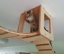mounted cat furniture
