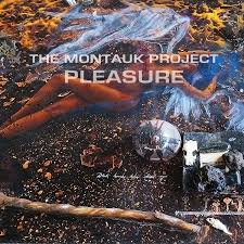 interview the montauk project whalebone