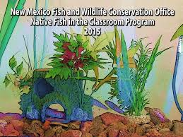 native new mexico plants new mexico fish and wildlife conservation office native fish in