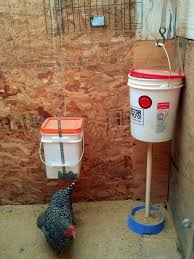 How High To Hang Pictures How High To Hang The Waterer Backyard Chickens