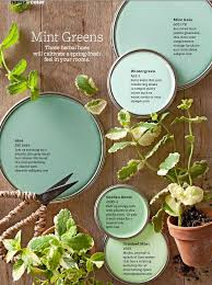 shades of mint green paint home design u0026 architecture cilif com