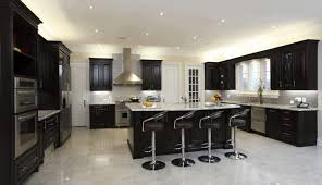 Light Colored Kitchen Cabinets Dark Kitchen Cabinets With Light Wood Floors Black Laminated