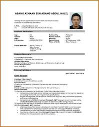 resume for job application pdf download job resume format download pdf 12 templates skills based 11