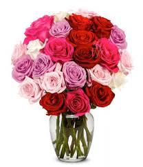 2 dozen roses flowers 2 dozen roses in pink purple white