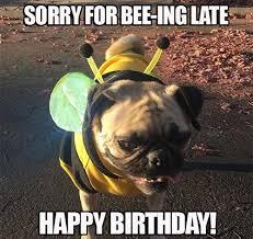 Happy Birthday Dog Meme - happy birthday memes dog wishesgreeting