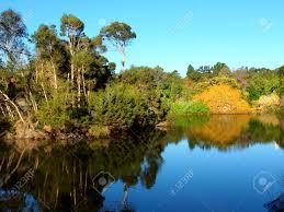 Melb Botanical Gardens by Lake In The Royal Botanic Gardens Of Melbourne Australia Stock