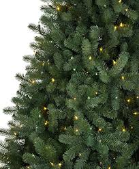 royal douglas fir tree tree classics