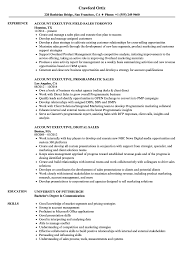 account executive resume sales executive account executive resume sles velvet