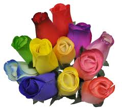 colored roses 2 dozen 24 wooden roses colorful arrangement in