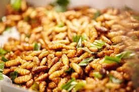 insectes dans la cuisine insectes comestibles grillés pour apéro insolite insolite