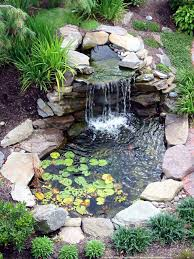 small backyard ponds backyard ponds ideas walsall home and