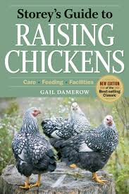 Raising Meat Chickens Your Backyard by Raising Backyard Chickens For Tasty And Healthful Meat The