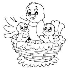 coloring bird nest coloring page