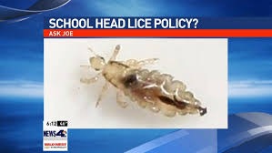 Are They Tough Enough Joe - ask joe is school district tough enough on head lice krnv