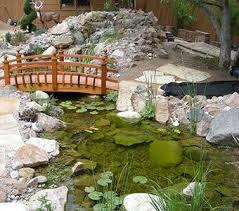 water gardens backyard pond supplies u0026 landscape design