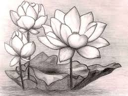 realistic drawing of a flower how to draw flowers step step with