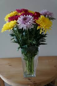 flowers for mothers day how to choose flowers for mothers day based on your mom u0027s