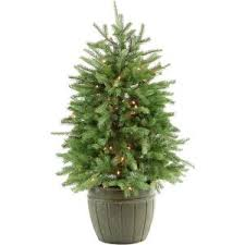 national tree company 4 ft weeping spruce artificial