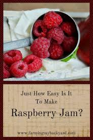 just how easy is it to make raspberry jam farming my backyard