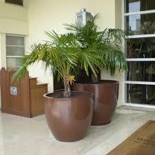 large tree planters fiberglass 33 39 44 diameter wannsee