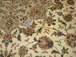 How To Get Dry Stains Out Of Carpet Pet Puddles On Rugs Uh Oh Urine Trouble U2013 Rug