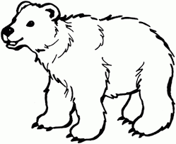 brown bear coloring page regarding inspire to color an images