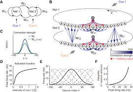 decentralized multisensory information integration in neural