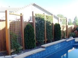 cucumber trellis ideas u2013 awesome house trellis ideas for house