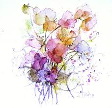 sweet peas watercolour u0026 pencil 17 x 15 cm art and inspiration