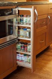 Kitchen Cabinet Spice Organizers by The 25 Best Modern Kitchen Spice Racks Ideas On Pinterest