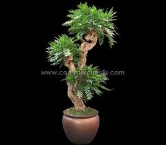 artificial acacia bonsai trees silk bonsai trees faux acacia