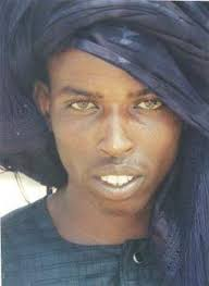 sogha music sogha fulbe mtdna so what s lurking in my maternal dna pinterest