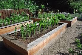 homeofficedecoration vegetable garden box ideas
