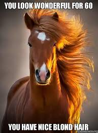 Nice Hair Meme - you look wonderful for 60 you have nice blond hair happy 60th
