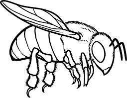 bee coloring pages honey bee garden picture to color bee 3