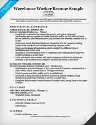 Resume Examples It Professional chronological resume format resumecompanion com