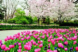 Botanical Gardens Images by 15 Breathtaking Botanical Gardens To Visit This Season Photos