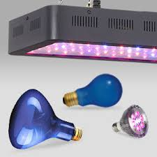 led lights for indoor plants grow lights and plant lights for indoor ls plus