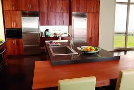 Delta Kitchen Faucets Bronze Kitchen Faucet Educate Kitchen Faucet Bronze 369567 Side