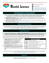 Account Executive Resume Sample by Executive Resume Samples Top Resume Samples Professional