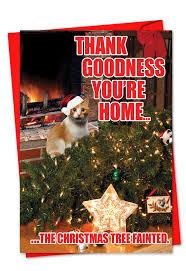 Cat Christmas Tree Meme - tree feinted cat christmas card cat humor cards