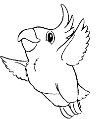 parrot coloring printable bird coloring page parrot free cute