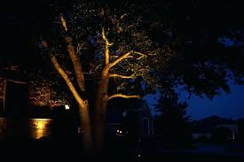 Lentz Landscape Lighting Lentz Landscape Lighting Tree Lighting Landscape Lighting Highland