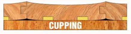 cupping vs crowning signs of potential water damage the